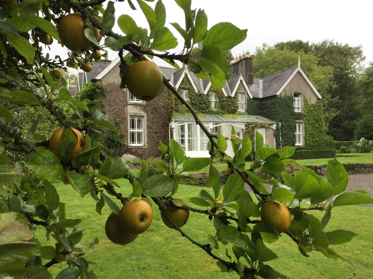 company days out blackstairs eco trail house with apples